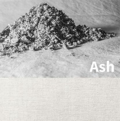 Squid ash color