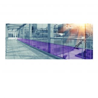 Plum C by Solar Screen
